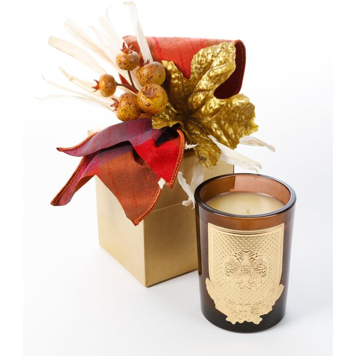 Lux (8oz) Fall Gift Box Candle- Apple Jack