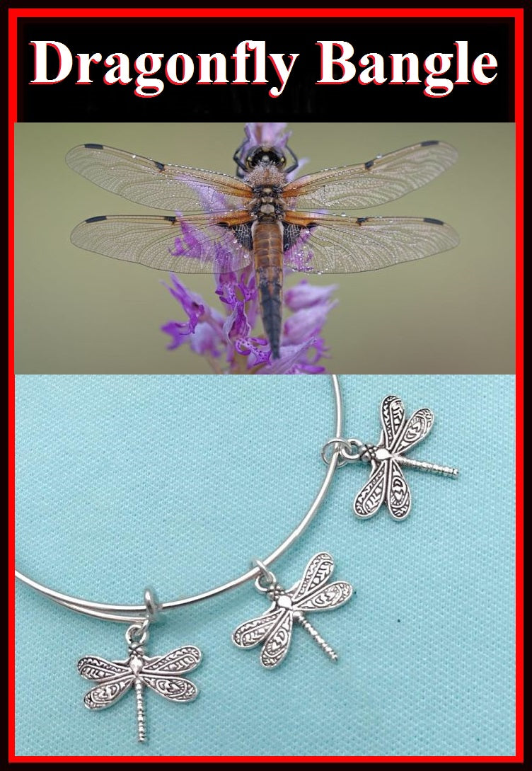 3 BEAUTIFUL Dragonfly Charms Expendable Bangle