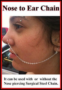 Custom Made Stainless Steel Nose to Ear Chain.