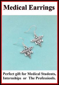 Medical Earring; Licensed Vocational Nurse Charms Dangle earrings.
