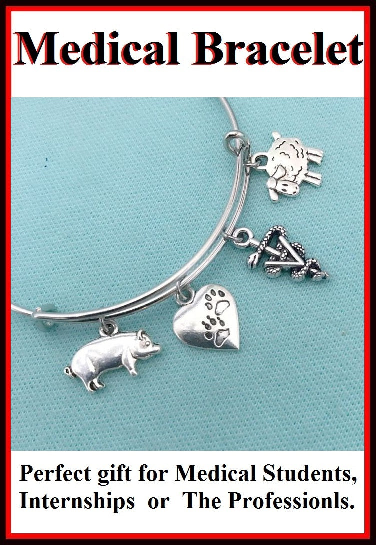 Medical Bracelet : Veterinarian Related Charms Expendable Bangle.