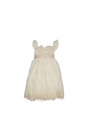 Biscotti Empire Dress Cream Colour