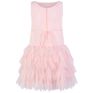 Biscotti Drop Waist Pink Floral Tulle Dress