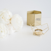 Wax melts - Anointed Candles