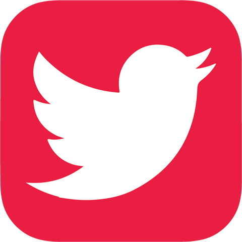 Icon_-_Twitter_-_Red_480x480.png?v=15933