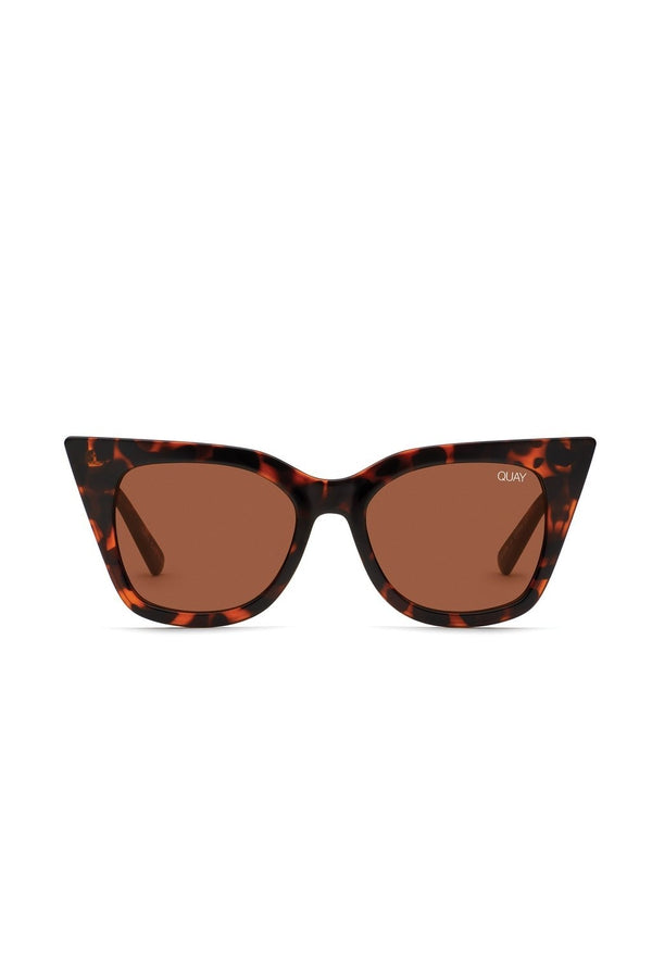 Harper in Tortoise and Brown