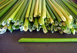 box of 50 biodegradable  grass straws
