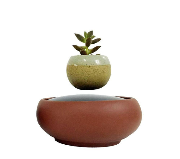 Air Bonsai - The Floating Potted Plant system