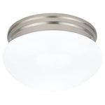 Glass Ceiling Light Fixture in Brushed Nickel
