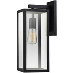 Outdoor/Indoor Wall Sconce (Matte Black Finish w/ Clear Glass Shade
