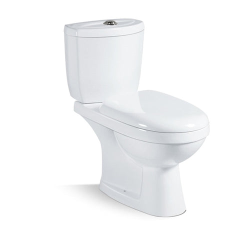 Washdown Two Piece Toilet in White