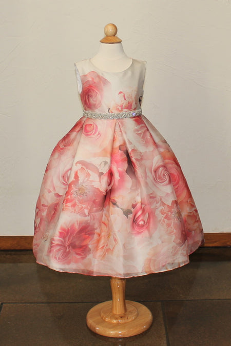 Girl's 'Valentina' Dress