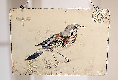 Tin Hanging Antique Style Bird Postcard Design