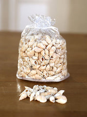 2 x Bags of Sea Shells Beach Home Decor Vase Filler Assorted Colours Seaside #5