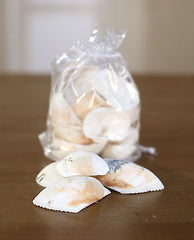 2 x Bags of Sea Shells Beach Home Decor Vase Filler Assorted Colours Seaside #2