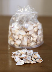 2 x Bags of Sea Shells Beach Home Decor Vase Filler Assorted Colours Seaside #4