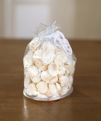 2 x Bags of Sea Shells Beach Home Decor Vase Filler Assorted Colours Seaside #6