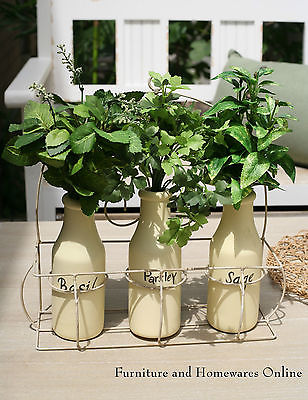 Faux Herbs in Bottles with Rack