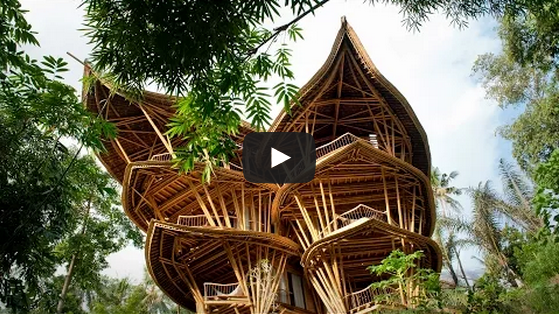 The Benefits Of Building With Bamboo
