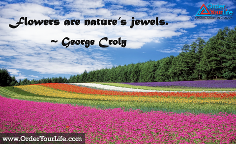 Flowers are nature's jewels. ~ George Croly