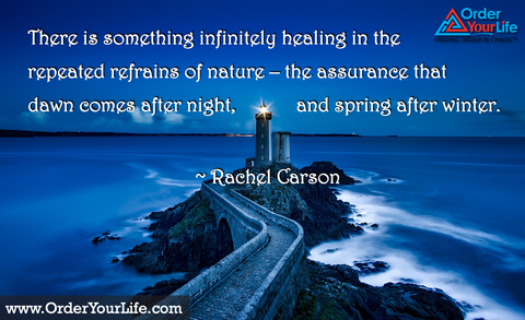 There is something infinitely healing in the repeated refrains of nature – the assurance that dawn comes after night, and spring after winter. ~ Rachel Carson