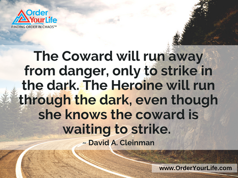The Coward will run away from danger, only to strike in the dark. The Heroine will run through the dark, even though she knows the coward is waiting to strike. ~ David A. Cleinman