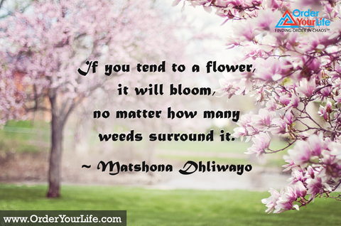If you tend to a flower, it will bloom, no matter how many weeds surround it. ~ Matshona Dhliwayo