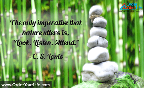"The only imperative that nature utters is, ""Look. Listen. Attend."" ~ C. S. Lewis"