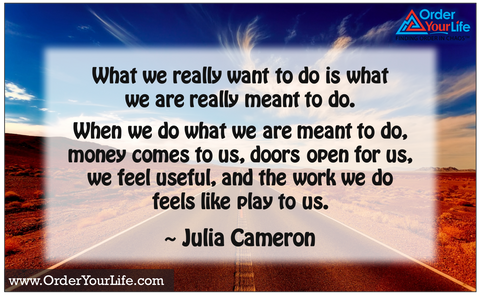 What we really want to do is what we are really meant to do. When we do what we are meant to do, money comes to us, doors open for us, we feel useful, and the work we do feels like play to us. ~ Julia Cameron