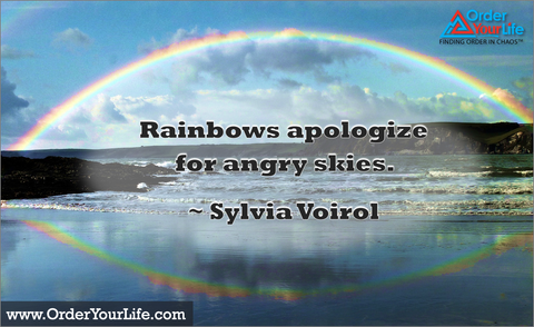 Rainbows apologize for angry skies. ~ Sylvia Voirol