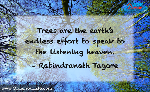 Trees are the earth's endless effort to speak to the listening heaven. ~ Rabindranath Tagore