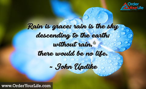 Rain is grace; rain is the sky descending to the earth; without rain, there would be no life. ~ John Updike