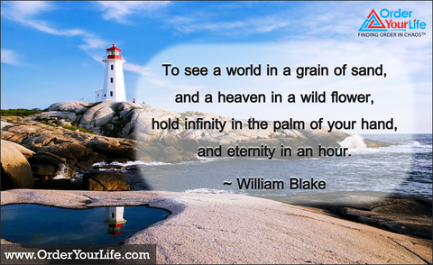 To see a world in a grain of sand, and a heaven in a wild flower, hold infinity in the palm of your hand, and eternity in an hour. ~ William Blake