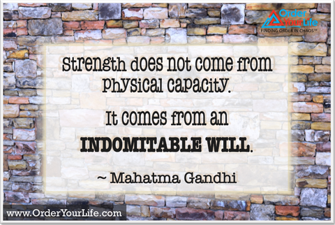 Strength does not come from physical capacity. It comes from an indomitable will. ~ Mahatma Gandhi