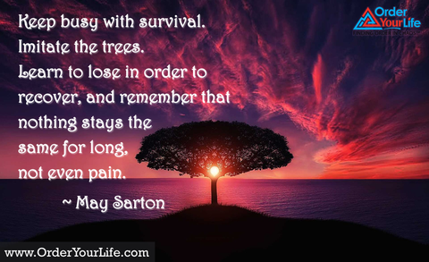 Keep busy with survival. Imitate the trees. Learn to lose in order to recover, and remember that nothing stays the same for long, not even pain. ~ May Sarton