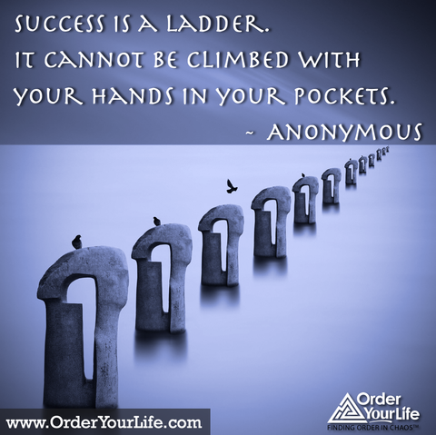 Success is a ladder.  It cannot be climbed with your hands in your pockets. ~ Anonymous