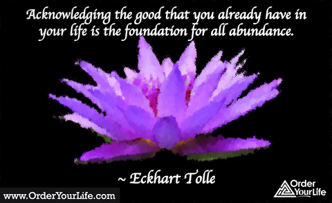 Acknowledging the good that you already have in your life is the foundation for all abundance. ~ Eckhart Tolle