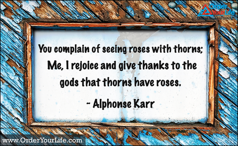 You complain of seeing roses with thorns; Me, I rejoice and give thanks to the gods that thorns have roses. ~ Alphonse Karr