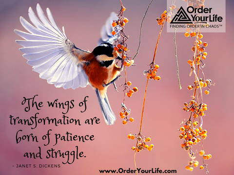 The wings of transformation are born of patience and struggle. ~ Janet S. Dickens