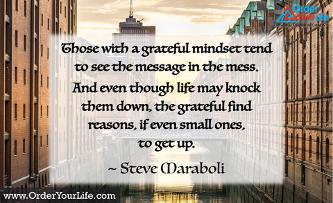 Those with a grateful mindset tend to see the message in the mess. And even though life may knock them down, the grateful find reasons, if even small ones, to get up. ~ Steve Maraboli