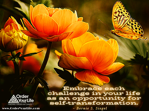 Embrace each challenge in your life as an opportunity for self-transformation. ~ Bernie S. Siegel