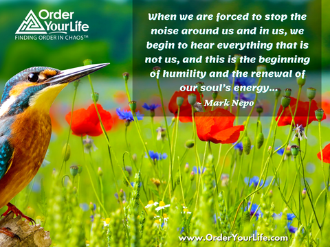 When we are forced to stop the noise around us and in us, we begin to hear everything that is not us, and this is the beginning of humility and the renewal of our soul's energy… ~ Mark Nepo