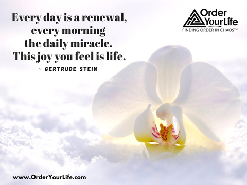 Every day is a renewal, every morning the daily miracle. This joy you feel is life. ~ Gertrude Stein
