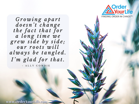 Growing apart doesn't change the fact that for a long time we grew side by side; our roots will always be tangled. I'm glad for that.  ~ Ally Condie