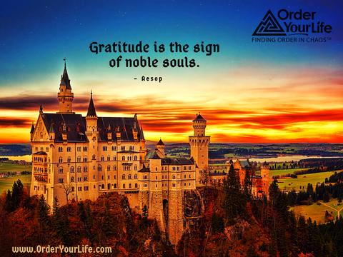 Gratitude is the sign of noble souls. ~ Aesop