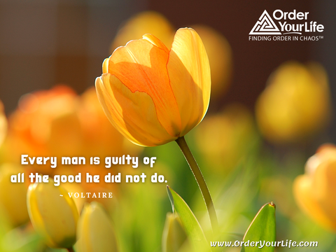 Every man is guilty of all the good he did not do. ~ Voltaire