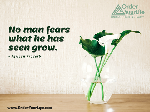 No man fears what he has seen grow. ~ African Proverb