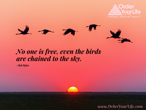 No one is free, even the birds are chained to the sky. ~ Bob Dylan