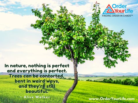 In nature, nothing is perfect and everything is perfect. Trees can be contorted, bent in weird ways, and they're still beautiful. ~ Alice Walker