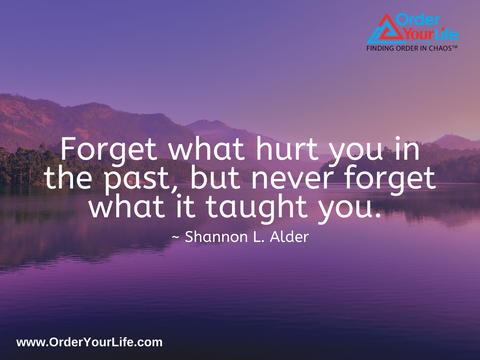 Forget what hurt you in the past, but never forget what it taught you. ~ Shannon L. Alder